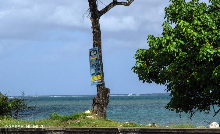 JM_150303 Jamaika_0018 Rantatie St Ann´s Bayssa