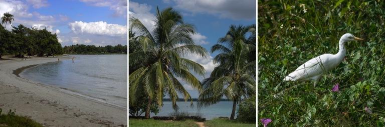 CU_161111 Kuuba_0188 Playa Larga Matanzasin provinssissa