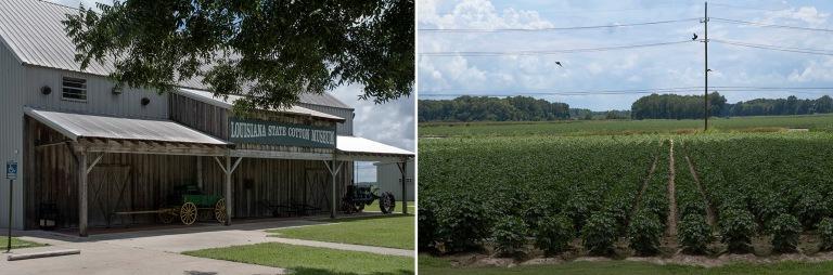 US_170629 Yhdysvallat_0093 Louisiana State Cotton Museum Lake Pr