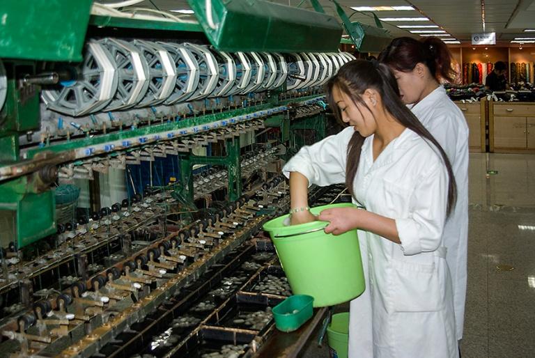CN_070616 096 Kiina Silkin tekoa Pekingin  Yuan Longin silkkikes