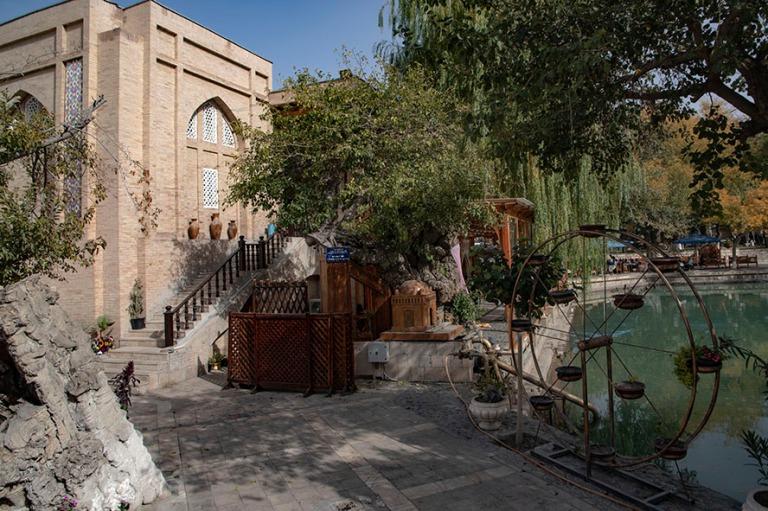UZ_181026 Uzbekistan_0413 Silkkiäispuu Buharan Lyab-i Hauzin pu