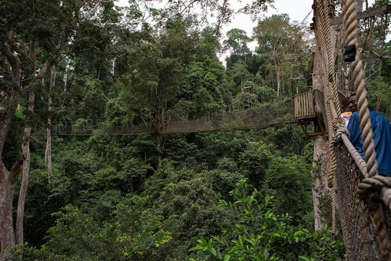 GH_190107 Ghana_0289 Kakumin kansallispuisto Centralin hallintoa