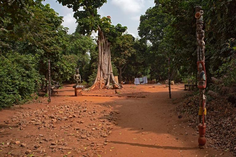 BJ_190110 Benin_0295 Kpassén salainen metsä Ouidahissa