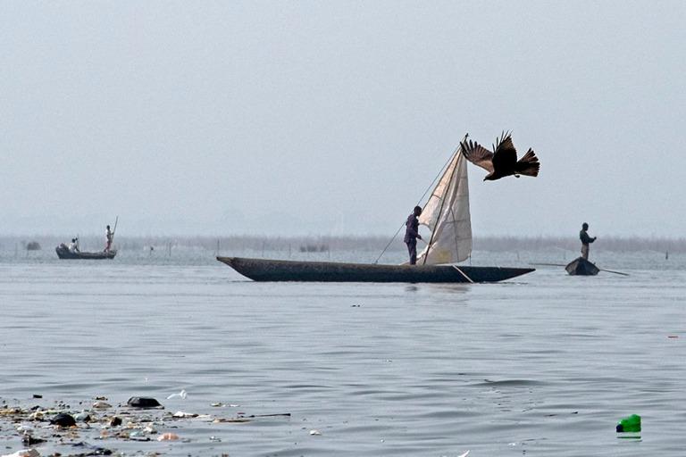 BJ_190111 Benin_0271 Kalastusta Nokoué-järvellä