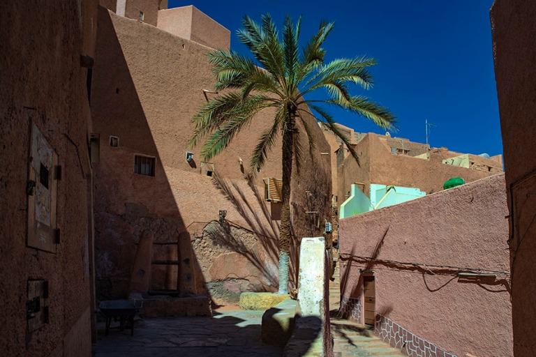 DZ_190316 Algeria_0263 Kaivo ja palmu El Atteufin ksarissa M'z