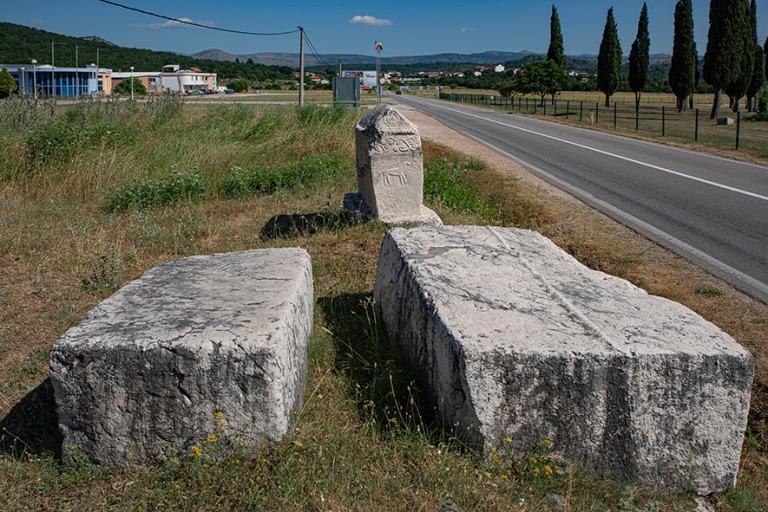 BA_190628 Bosnia-Hertsegovina_0140 Radimljan nekropoli Popratiss