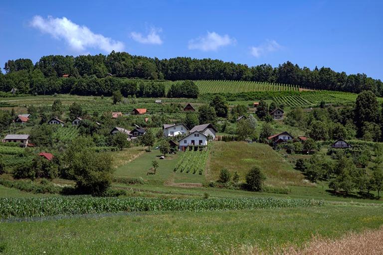 SI_190703 Slovenia_0026 Podzemeljin maalaismaisemaa Notranjskan