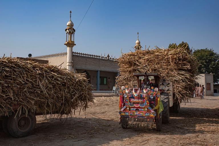PK_200126 Pakistan_0163 Sokeriruokoasema Uch Sharifissa Punjabis