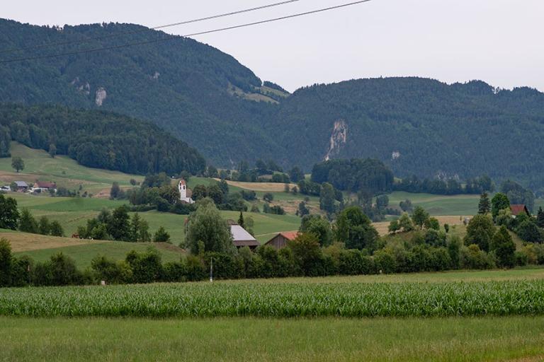 CH_190711 Sveitsi_0107 Thalin luonnonpuistoa Solothurnin kantoni