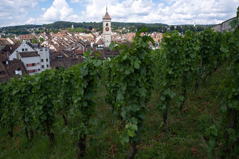 CH_190714 Sveitsi_0102 Schaffhausenin panraamaa Munot-linnoituks