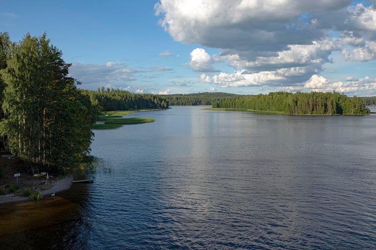 FI_200703 Suomi_0091 Päijänteen kansallispuistoa Pulkkilanharj