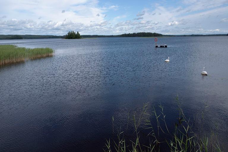 FI_200705 Suomi_0014 Iso-Kallan Juurusvesi Kuopion Jännevirrass